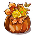 handmade autumn decor dried flowers yellowed vector image