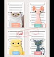 Mugshot of cute cats holding a banner 1 vector image