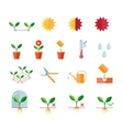 Seeding and planting instructions steps pruning vector image vector image