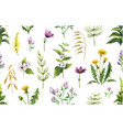 watercolor seamless pattern with field vector image vector image