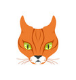beautiful red cat cartoon animal character vector image