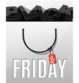 Black Friday sale design Letters in the package vector image