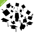 Graduate silhouettes vector image