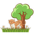 isolated picture cheetah in garden vector image vector image