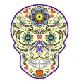 abstract colorful skull vector image vector image