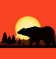 bear on background of the sunset and mountain vector image