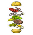 burger ingredients on white background vector image