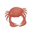 crab fresh seafood shellfish cartoon vector image vector image