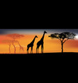 desert view with giraffes background with african vector image vector image