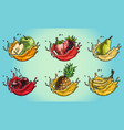fruits splash set color vector image vector image