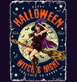 halloween night vintage colorful poster vector image