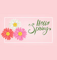 Hello spring banner hand drawn lettering