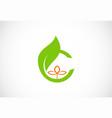 letter c green leaf organic logo vector image