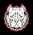 pitbull chain dog logo mascot vector image