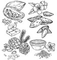 set food and cosmetic care ingredients vector image vector image