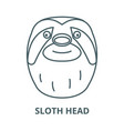 sloth head line icon linear concept vector image