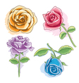 watercolor rose vector image vector image