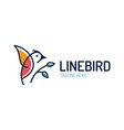 bird logo design template in isolated white vector image vector image