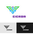 cicada insect creative color logo cornered wide vector image vector image