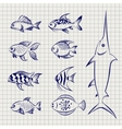 hand drawn sketch fish vector image vector image