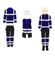 professional protective clothes and safety helmet vector image vector image