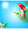Summer tropical background with red parrot vector image vector image