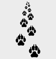 Trail of dogs 3 vector image vector image