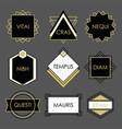 cute black geometrical vintage emblems on gray vector image