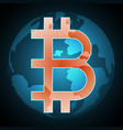 bitcoin symbol with globe vector image