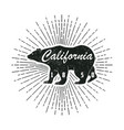 california grunge print with bear vector image vector image