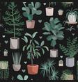 cute houseplants on dark background house indoor vector image vector image