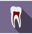 Human tooth flat icon vector image vector image