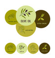 olive oil labels vector image vector image