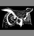 owl - icon design on black vector image vector image