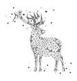 polygonal deer on white background vector image vector image