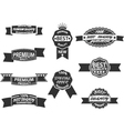 set 9 retro premium quality labels vector image