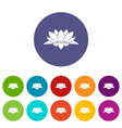 lotus flower set icons vector image