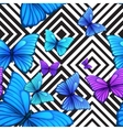 seamless pattern with blue butterfly black vector image vector image