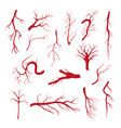 set of blood vessels - modern isolated clip vector image