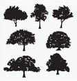 silhouettes of tree vector image vector image