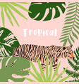 tropical summer arrangement with tiger palm vector image vector image
