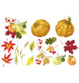 autumn festival set with decor elements of nature vector image vector image