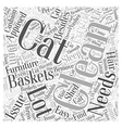 cat baskets Word Cloud Concept vector image vector image