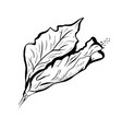hibiscus flower in tattoo style black and white vector image