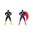 Male superhero vector image
