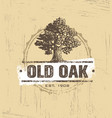 oak tree logo design vector image