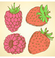 Sketch strawberry and raspberry in vintage style vector image vector image