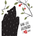Wild Black Bear Loves Raspberry vector image vector image