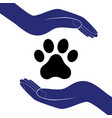 animal dog paw in people hand human help vector image vector image