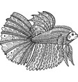 Betta fish hand drawn coloring page vector image